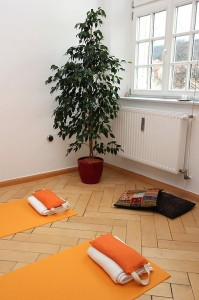 yoga_room_corner_with_plant_medium